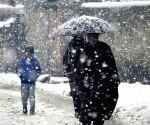 J&K's higher reaches receive fresh snow, heavy rain in plains