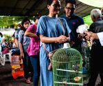 INDONESIA JAKARTA ANIMAL BLESSING