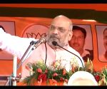 Article 370 will be removed if Modi returns to power: Shah