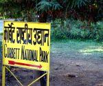 Whistleblower bureaucrat crackdowns on 'VVIP culture' at Corbett National Park