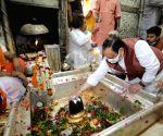 Free Photo: Varanasi:JP Nadda offers prayers at Kashi Vishwanath Temple in Varanasi