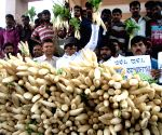 Vatal Nagaraj's demonstration against hike in prices of vegetables