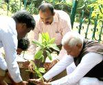 World Environment Day - Karnataka CM & Governor plant trees