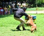 Karnataka Police to induct 50 dogs at Rs 2.5 cr