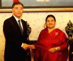 NEPAL KATHMANDU WANG YANG MEETING
