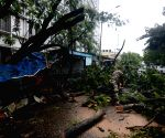 KMC workers with police personnel at work to clean the road due to daily life disrupted during the uprooted tree at major road after the rain  in Kolkata.