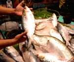 Record seizures made in Bengal polls include Hilsa fish, pan masala, sarees