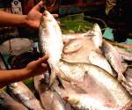 Record seizures made in Bengal polls include Hilsa fish, pan masala, sarees