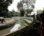 People throng Alipore Zoological Gardens on New Year
