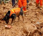CHINA YUNNAN QIAOJIA COUNTY LANDSLIDE PEOPLE MISSING