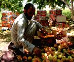 AFGHANISTAN LAGHMAN ECONOMY AGRICULTURE