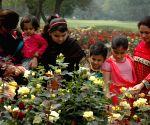 PAKISTAN LAHORE FLOWER SHOW