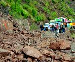 Nine tourists killed in H