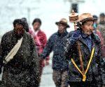 Lhasa (China): Snowfall in Lhasa