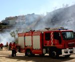 PORTUGAL LISBON BUSH FIRE