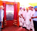 Punjab CM lays foundation stone of vegetable processing plant