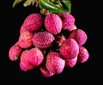 File Photos: Lychees