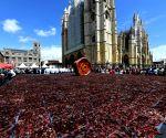 SPAIN LEON BIGGEST CECINA GUINNESS RECORD