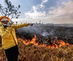 Brazil bans land clearance blazes for 60 days amid crisis