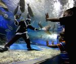 A diver dressed as a Santa Claus feeds marine animals inside an oceanarium