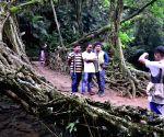 Meghalaya to showcase living root bridge at R-Day parade