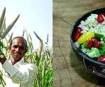 Millet-based diet can lower risk of type 2 diabetes: Study