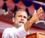 Govt's mega push for positivity is like burying one's head in the sand: Rahul