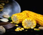 Monsoon superfoods to include in your diet