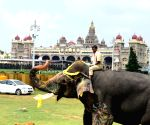 World famous Mysuru Palace shut for sanitisation after Covid scare