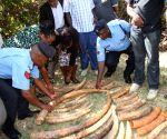 KENYA NAIROBI TUSKS CONFISCATION