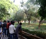 'Mentally disturbed' man jumps in lion's enclosure at Delhi zoo