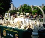 U.S. NEW YORK IVORY ARTIFACTS DESTROYING