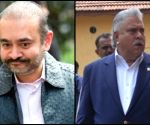 Nirav Modi 2nd high profile fugitive to lose extradition battle
