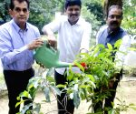 NITI Aayog CEO participates in Green India Challenge