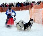 RUSSIA-NIZHNY NOVGOROD-DOG RACE