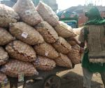 Onions at Azadpur mandi