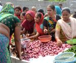 Onion prices to fall: Government