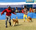9th and 10th All India Championship All Breed Dog Show