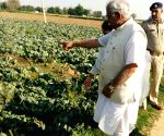 Manohar Lal Khattar takes stock of damages caused to crops