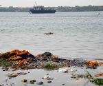 A decomposing body washed up at the bank of Ganga River, amid ongoing COVID-19 pandemic, at Gulbi Ghat in Patna.