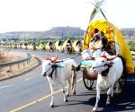 People from Chikkodi in decorated Chakkadis (bullock cart) who are on the way to Saundatti Yellamma Jatra near Belagavi
