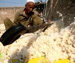 Peshawar (Pakistan): handmade quilts and blankets at a Pakistan factory