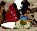 Peshawar (Pakistan): People flee Pak tribal region