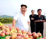 DPRK-PYONGYANG-KIM JONG UN-TAEDONGGANG COMBINED FRUIT FARM-VISIT
