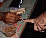 Polling underway for Telangana's Nagarjunasagar Assembly bypoll