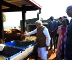 Rweru (Rwanda): PM Modi donates 200 cows under Girinka