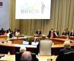 Johannesburg (South Africa): 10th BRICS Summit - BRICS Leaders' Restricted Session
