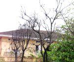 Priyanka Chopra's new house