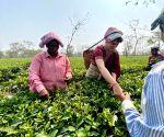 Free Photo: Assam: Priyanka Gandhi Vadra's interaction with tea garder workers at Sadhuru tea garden at Biswanath district (Assam)