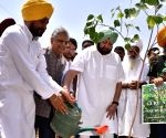 Amritsar: World Environment Day - Amarinder Singh